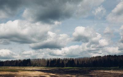 Roadtrip in den Harz - Auf der Suche nach dem Licht
