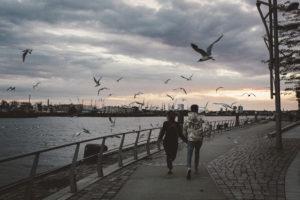 Durch die Vögel - Hamburg, Elbe