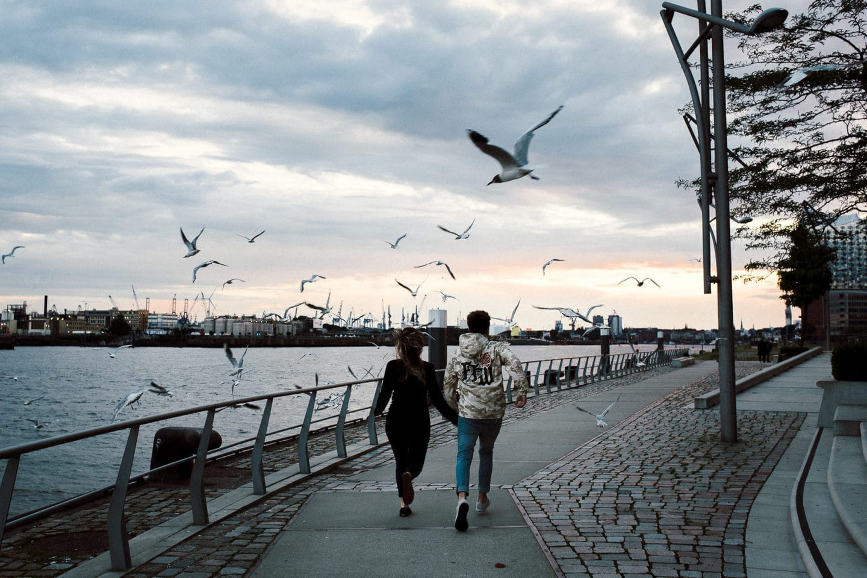 Durch die Möwen rennen an der Elbe in Hamburg